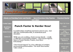 The Punch Papers: How to Punch Harder, Faster, and More Efficiently