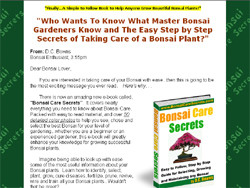 Bonsai Care Secrets