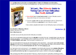 The Ultimate Chihuahua Care Handbook