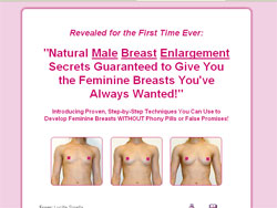 The Flat to Fem Breast Enlargement Program