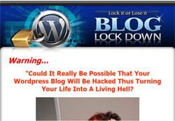 Blog Lock Down: Lock it or Lose it