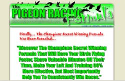 The Pigeon Racing Formula