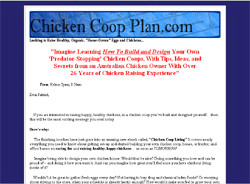 Chicken Coop Living
