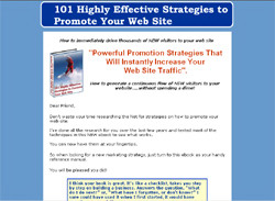 101 Highly Effective Strategies to Promote Your Web Site