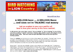 Bird Watching in Lion Country:Retail Forex Trading Explained