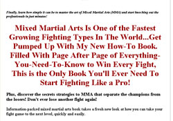 Secrets of Mixed Martial Arts