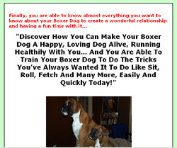 Boxer Dog Secrets - Your Ultimate Guide To Make Your Dog Happy, Healthy And Obedient!