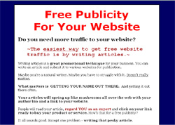 The 30 Minute Article Writing System