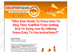 Goldfish Secrets Revealed!