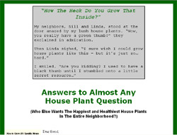 1001 Answers to House Plant Questions