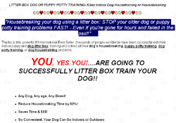 How To Litter Box Train Your Dog