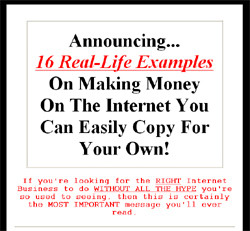 16 Different, Killer Money-Making Internet Businesses You Can Copy For Your Own!