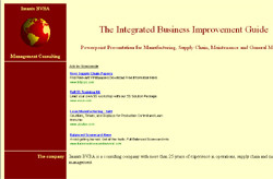 Integrated Business Improvement Guide
