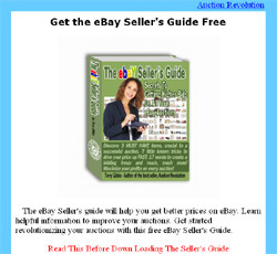 The eBay Seller's guide
