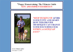 Puppy Housetraining: The Ultimate Guide